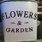 Blech-Topf oval weiss, Flowers and Garden